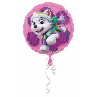 Paw Patrol Folienballon Skye und Everest