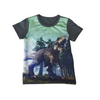 Squared & Cubed Jungen T-Shirt Dino grün