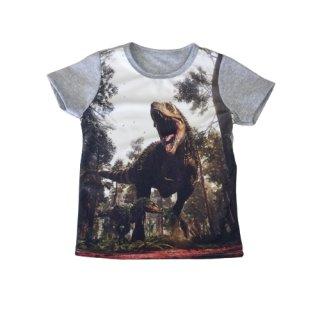 Squared & Cubed Jungen T-Shirt Dino grau