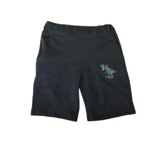Jungen Dino Shorts grün kurze Hose